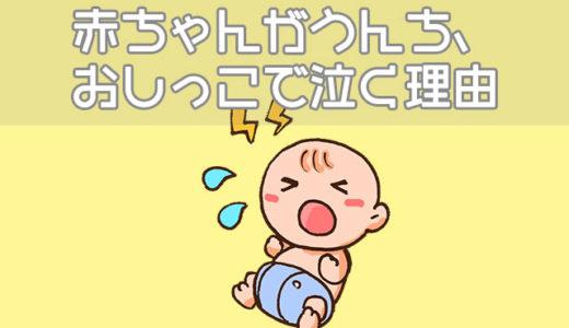 赤ちゃんがうんちやおしっこで泣く理由、泣かない理由