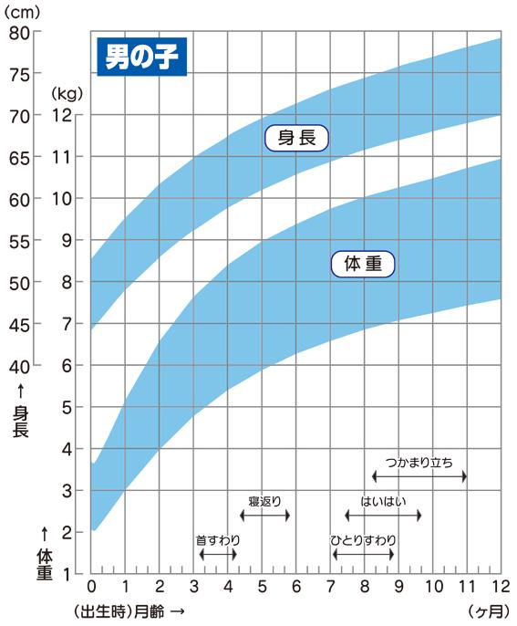 身体発育曲線_男児