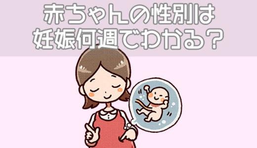 【男女の見分け方】赤ちゃんの性別は妊娠何週でわかる?