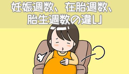 妊娠週数、在胎週数、胎生週数、胎生齢、妊娠齢の違い